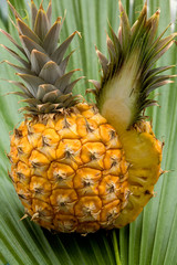 Fresh pineapple  on the palm leaf