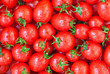 Healthy food, background. Red tomatoes with dew