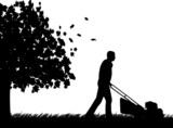 Man cut the lawn in garden in autumn or fall silhouette