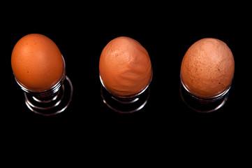 Eier 1