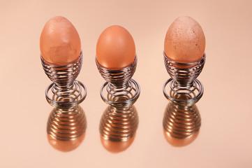 Eier 6