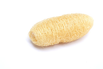Natural scrubber of dried Ridge gourd