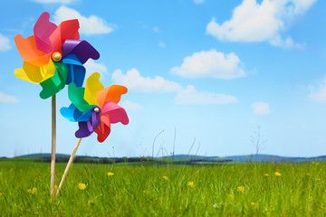 Pinwheels on Meadow