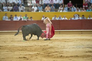 El toro entrando a la muleta.