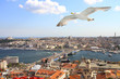 Birds eye view of Istanbul