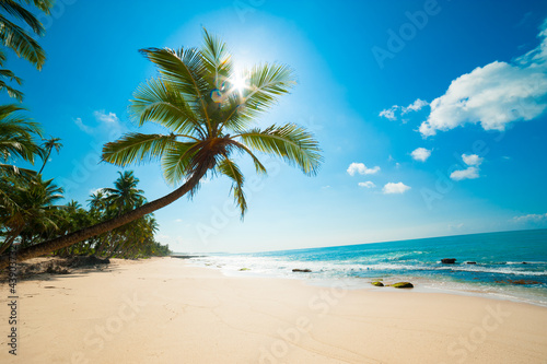 Papiers peints Plage Tropical beach