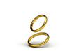 重なりゆく2つの指輪