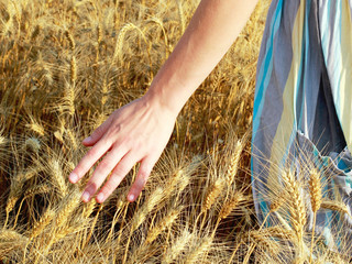 female farmer and wheat land