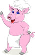 Pig chef cartoon character