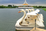 Water cycle boat at public park, Suanluang Rama 9, Thailand poster