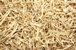 Wooden sawdust and shavings background