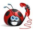 coccinella telefono 2
