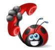 coccinella telefono maxi