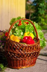 basket with harvest