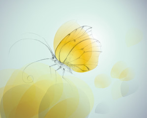 Yellow butterfly on flower / Realistic vector sketch
