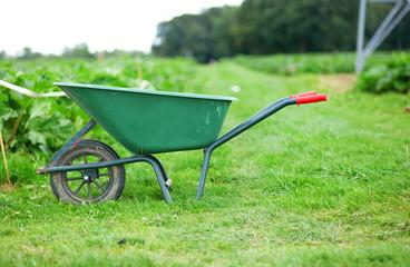 Handcart on a farm