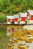 Scandinavian house poster