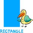 rectangle shape with cartoon bird