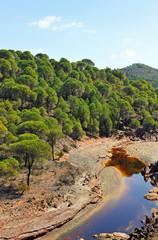 Aguas contaminadas, Río Tinto, Huelva