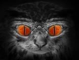 The Wildcat. Halloween nightmare. poster