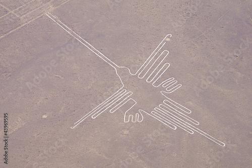 Linien von Nasca - 43969595