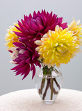elegant bouquet of dahlia daisies in glas vase on lace undergrou