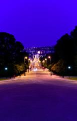 carl johans street