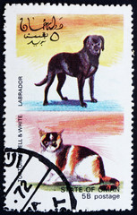 Postage stamp Oman 1972 Cat and Dog