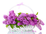 Fototapety beautiful lilac flowers in basket isolated on white