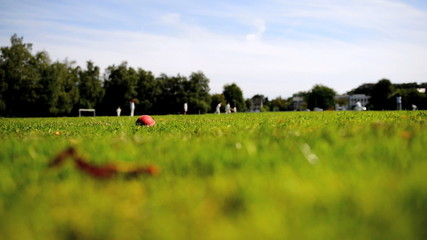 Cricket match in Ghent, Belgium