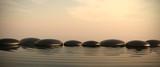 Fototapety Zen stones in water on sunrise