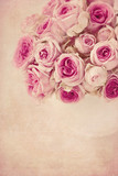Fototapety Pink roses