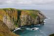 Bird Cliffs in Newfoundland