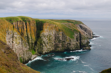 Bird Cliffs in Newfoundland