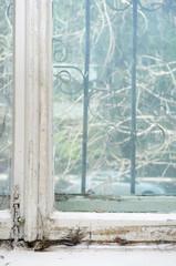 Neglected window