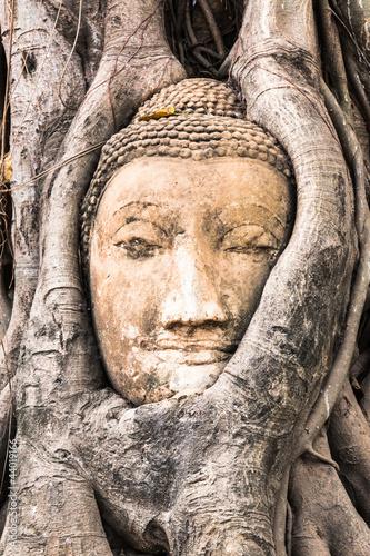 Fototapeten,buddhas,buddhismus,asien,ayuthaya
