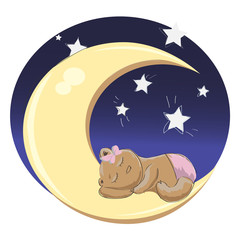 Baby_bear_sleeping_girl