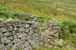 dry stone sheepfold in Cheviot Hill, England