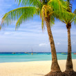 perfect tropical beach scenery