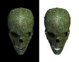 Malware skull poster