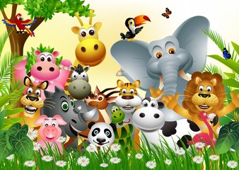 funny big set of animal cartoon with  tropical forest background