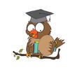 Owl Teacher  in vector format