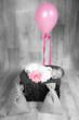 nouveau né et ballon rose