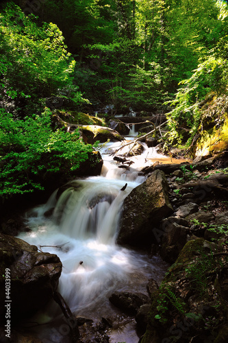 a stream in uludag , bursa, turkey