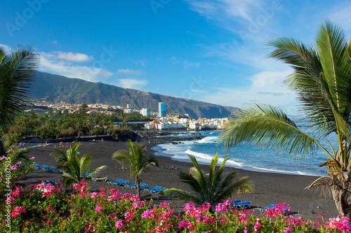 playa Jardin, Tenerife, Spain - 44037525