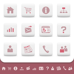 Professional web icons on white buttons. Vector set