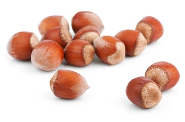 Filbert nuts isolated on white