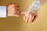 couple's hands with wedding rings