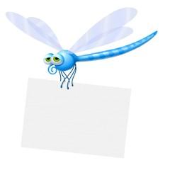 libellula cartello
