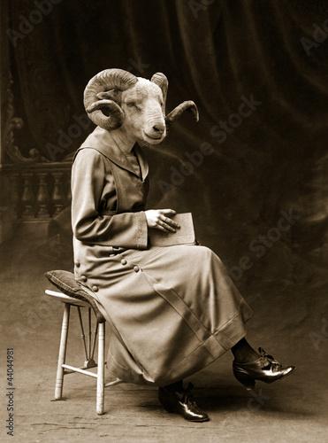 Fototapeten,weiblich,portrait,rammelburg,schaf